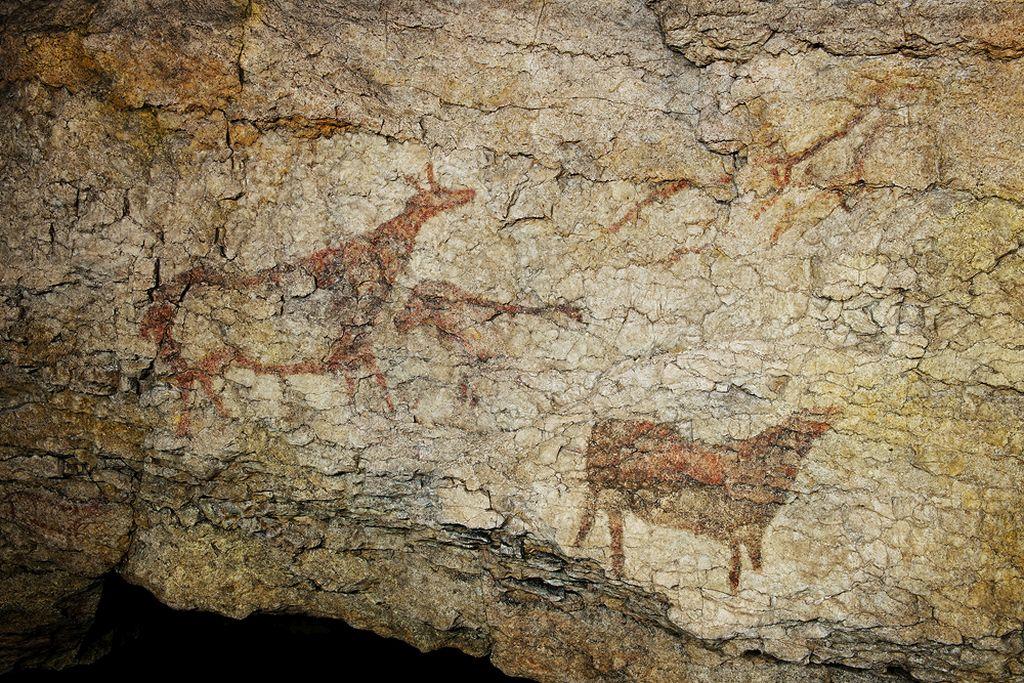 Art Paléolitique en Europe  Cuevas